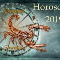 Horoscope 2019 du Scorpion
