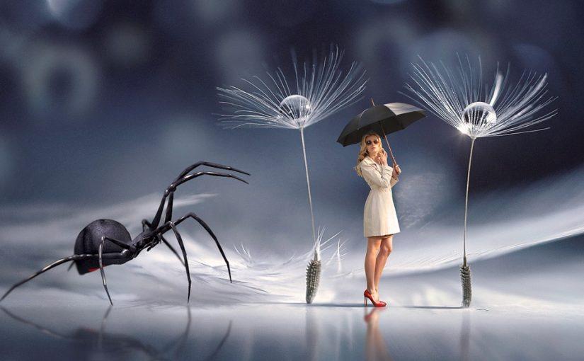 Significations de rêver d'araignée