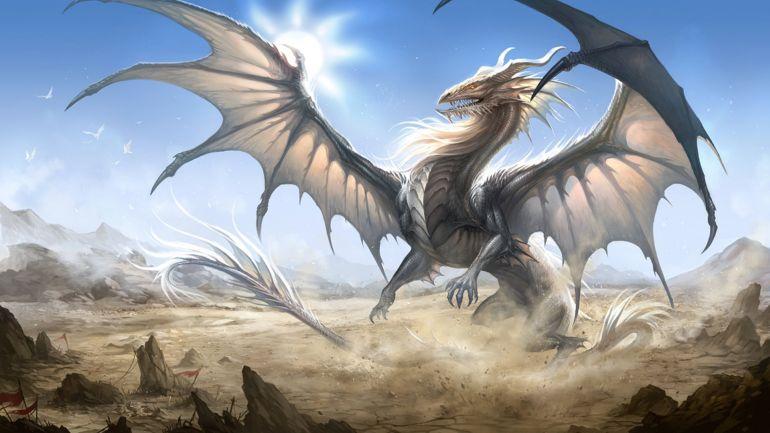 rever de dragon blanc