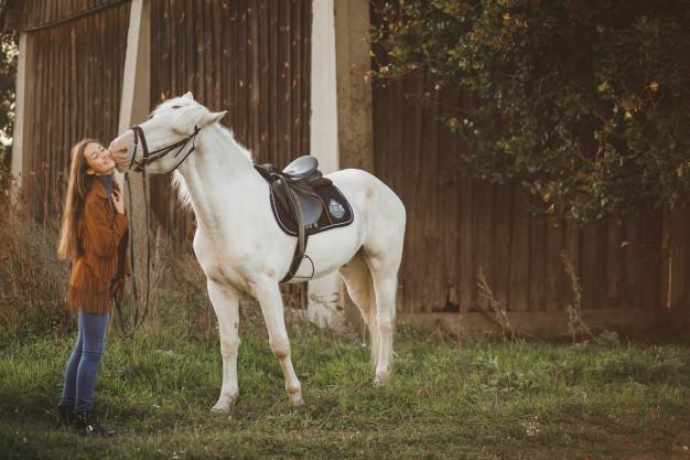 rever de dompter un cheval
